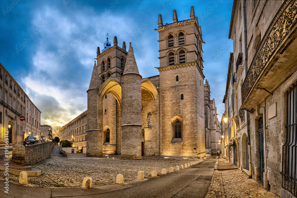 Fototapety, obrazy: Gothic Cathedral of Saint Peter at dusk in Montpellier, Occitanie, France