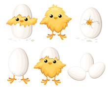 Set Of Funny Chicken In Egg Fo...