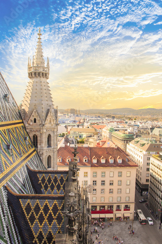 Wall Murals Vienna View of the city from the observation deck of St. Stephen's Cathedral in Vienna, Austria