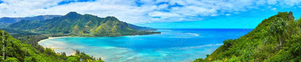 Fototapeta ハワイ クラウチング・ライオン岩ハイキングからの風景