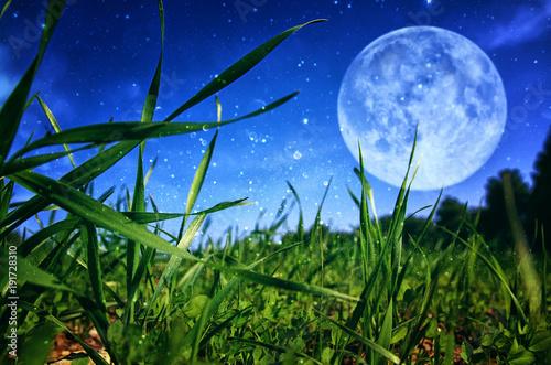 Surrealistyczna fantazja koncepcja - pełnia księżyca z gwiazdami brokat na tle nieba.