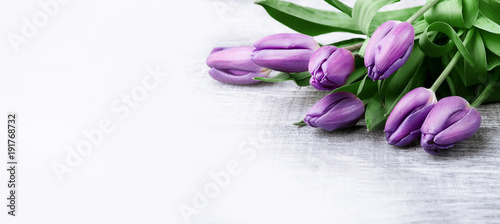 Stickers pour porte Tulip luxurious fresh fashionable purple tulips on a wooden background