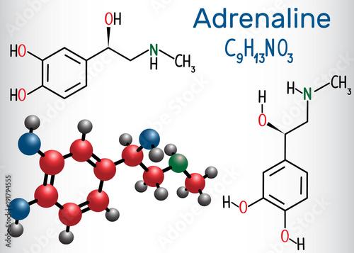 Fotografie, Obraz  Adrenaline (epinephrine) molecule