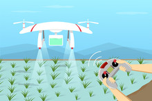 Agriculture Drone Fly On Paddy By Remote Control