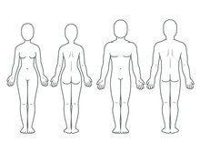 Male And Female Body Front And...