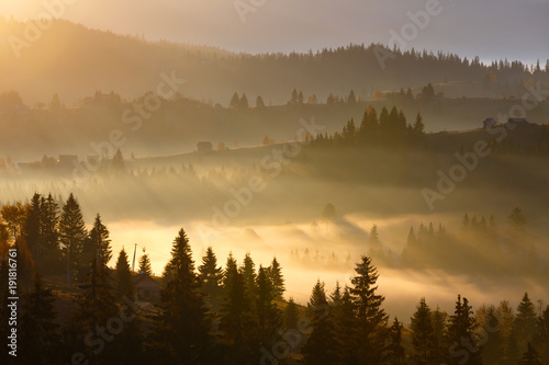 Poster Morning with fog First sunrise rays of sun in Carpathian mountains.