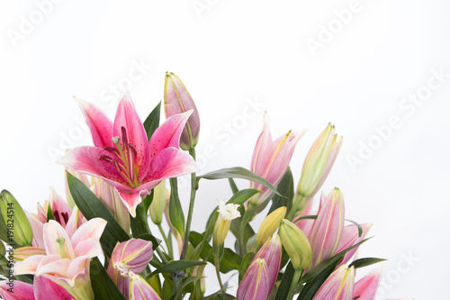 Foto The beautiful lilly flowers are on white background.