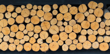 Wood Stump Background, Wooden Section Background For Room Decoration
