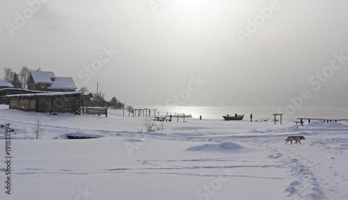 Papiers peints Arctique sunny snow