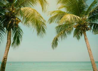 Panel Szklany Vintage Palm trees coconut beach sea sky in the summer of the holiday vintage toned