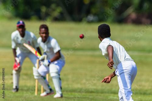 Stampa su Tela Cricket Action Batsman Ball Bowler Wicket Keeper Closeup unidentified