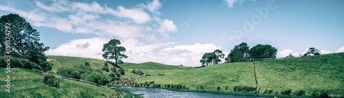 Fotografie, Obraz  Green Grass Field in Countryside in Vintage Tone
