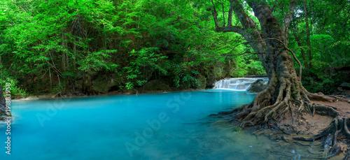 fototapeta na ścianę Panoramic beautiful deep forest waterfall in Thailand