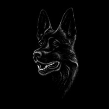 The Vector Logo Dog For T-shirt Design Or Outwear.  Hunting Tattoo Dog  Style Background.