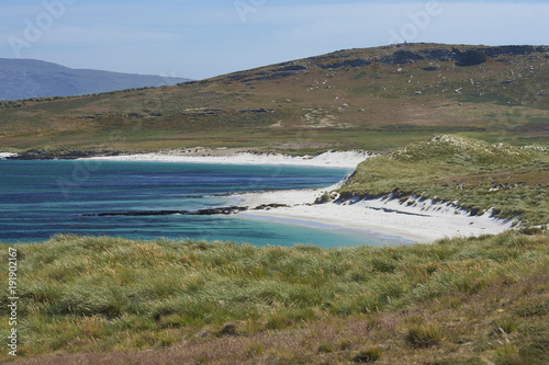 Foto op Aluminium Arctica White sands and blue waters of Leopard Beach on Carcass Island in the Falkland Islands