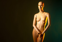 Mannequin Girl On A Dark Background. Plastic Mannequin. Dummy For Shop Window.