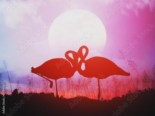 Silhouette of romantic flamingos at sunset.