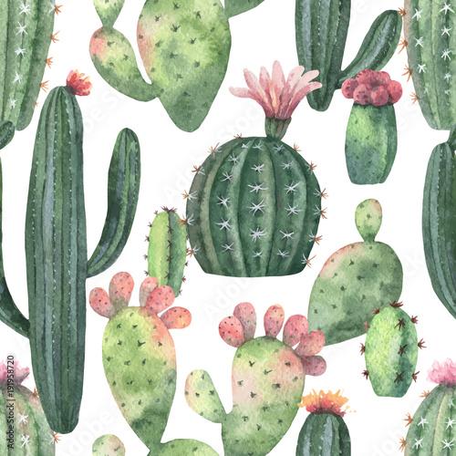 akwarela-wektor-wzor-kaktusow