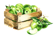 Box With Green Apples. Waterco...