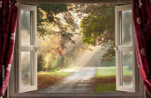 Otwarte okno na wspaniały ranek z promieniami słońca wpadającymi przez drzewa na wiejską ścieżkę.