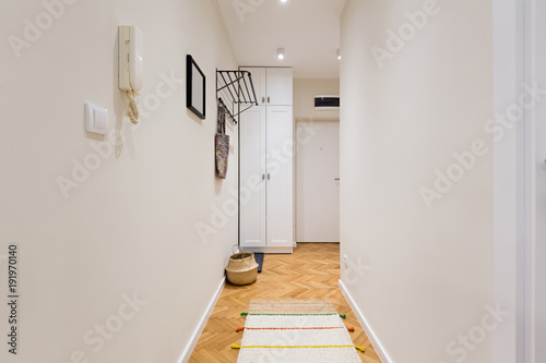 Fotografie, Obraz Entrance corridor with white closet