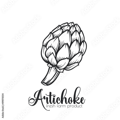 Photo Hand drawn artichoke icon.