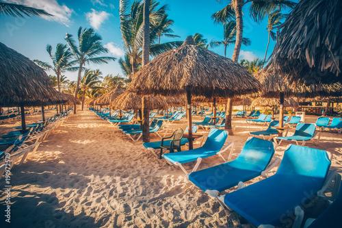 Photo Tropical Beach Resort in Punta Cana, Dominican Republic