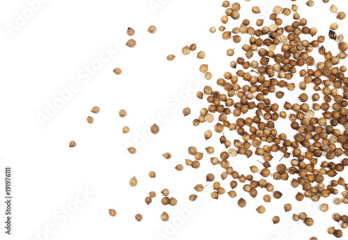 Coriander seeds isolated on white background, top view