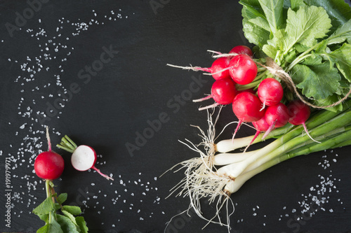 Bunch of fresh radish on slate dish. Top view. Copy space.