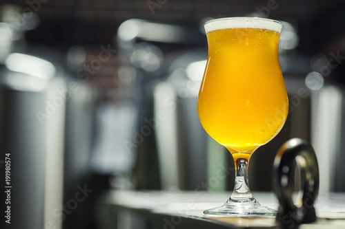Fotografía Tulip glass of light beer in a brewery