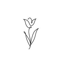 Tulip Outline Icon