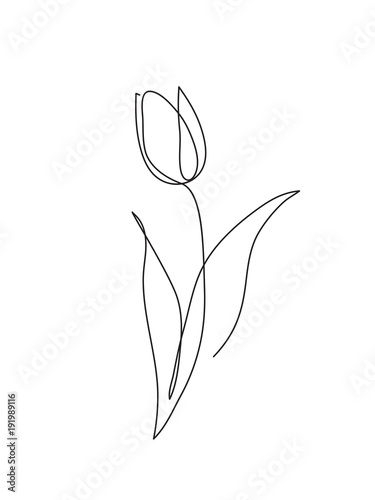 Photo  Tulip outline icon