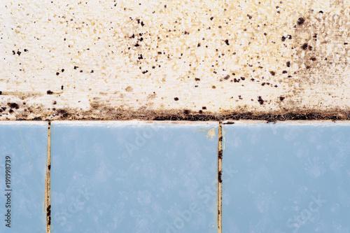 Schimmelflecken Im Bad Durch Feuchtigkeit Und Mangelnde Durchluftung