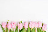Fototapeta Tulipany - Pink tulips border on white background. Copy space, top view