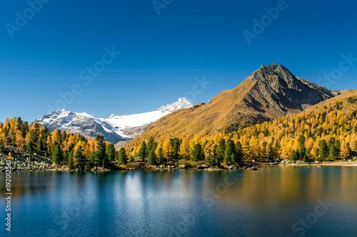Fototapeta Lagh da Val Viola mit Bernina Massiv im Herbst, Puschlav, Schweiz obraz na płótnie