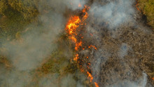 Aerial View Forest Fire On The...