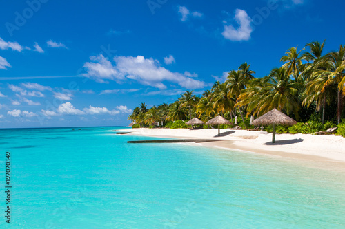 Foto auf Gartenposter Tropical strand Beautiful sandy beach with sunbeds and umbrellas in Indian ocean, Maldives island