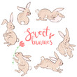 Vector sweet bunnies, character cute collection. Pastel colors.