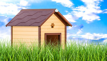 Wooden Doghouse In Green Grass...