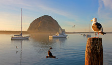 Morro Rock Is  A Landmark At Morro Bay On The Central California Coast