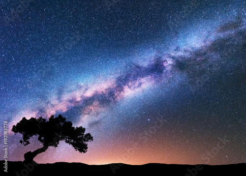 Obraz Milky Way with alone old crooked tree on the hill. Colorful night landscape with bright milky way, starry sky, tree, yellow light in summer. Space background. Galaxy. Beautiful universe. Travel - fototapety do salonu