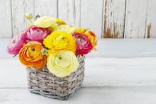 Bouquet Of Colorful Ranunculus...