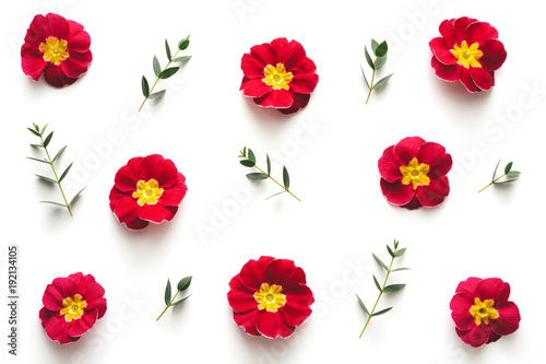 background-with-red-flowers
