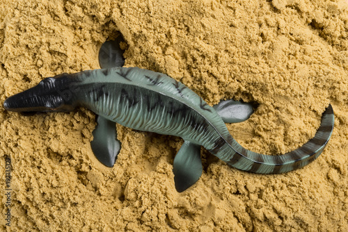 Cuadros en Lienzo Mosasaurus on sand concept of historical animal excavating