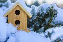 A Bird House In A Winter Garde...