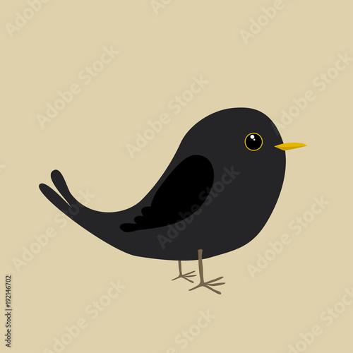 Cute blackbird Canvas Print