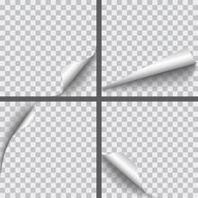 Set Of Vector Realistic Paper ...