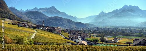 Photo panorama of autumn vineyards in Switzerland