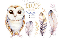 Watercolor Owl With Flowers An...