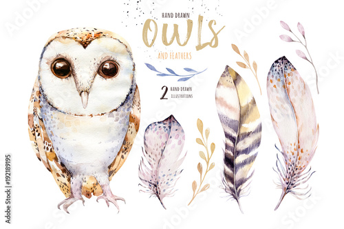 Watercolor owl with flowers and feather. Hand drawn isolated owls illustration with bird in boho style. Nursery printable poster design.